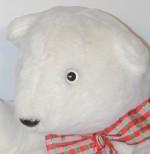 Polar Bear Family Faces - Product Image